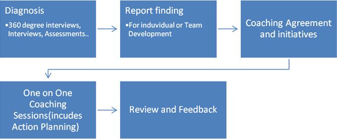 Overall Executive Coaching Process